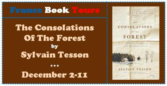 Consolations of the Forest banner