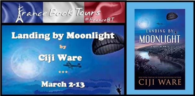 Landing by Moonlight - Banner